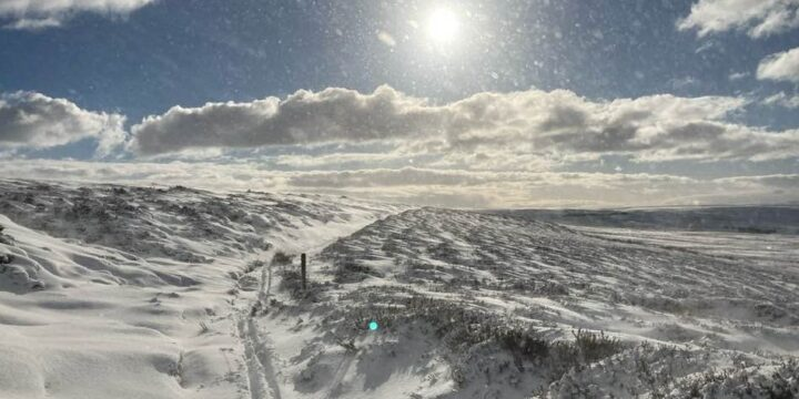 February 2021 – The Beast from the East – Take 2